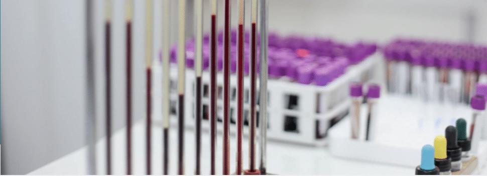 Laboratório Fácil - Exames Gravidez 5